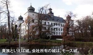 貴族といえば城。会社所有の城は、モース城。