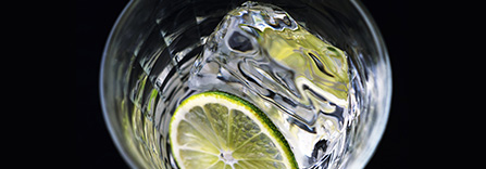 ジン Gin