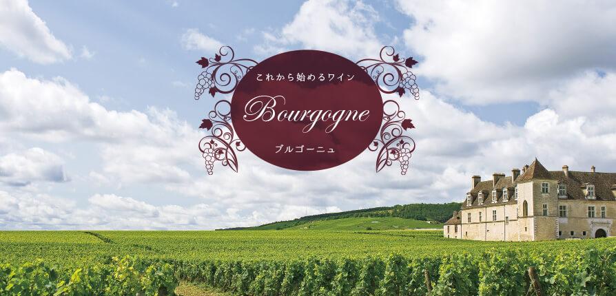 これから始めるワイン Bourgogne ブルゴーニュ